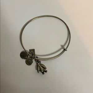 Alex and Ani penguin charm bracelet in silver